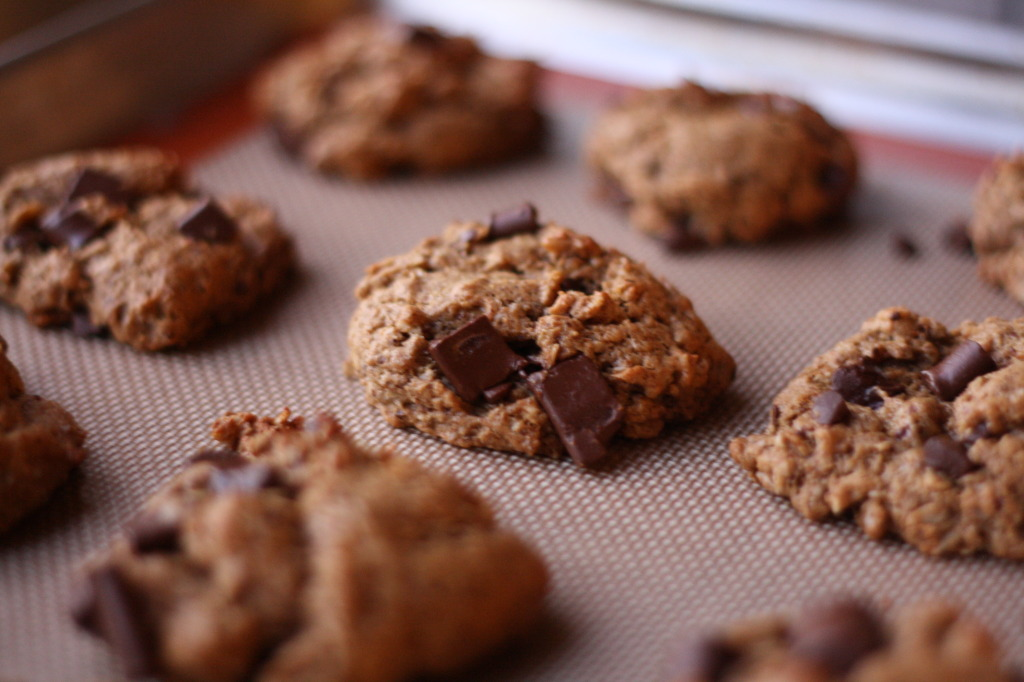 Flourless Lactation Cookies